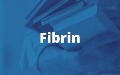 Fibrinbelag
